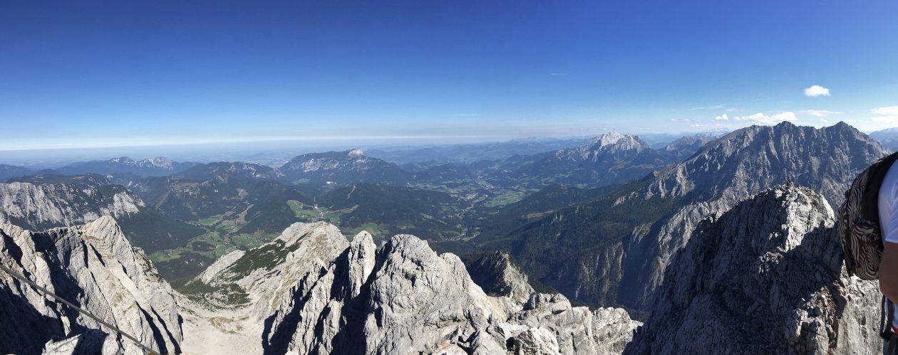 Bjergfeber