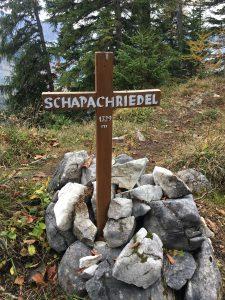 Schapachriedel